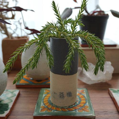 """""""Rebirth"""" Ceramic Series - Tassel Fern Wavy"""