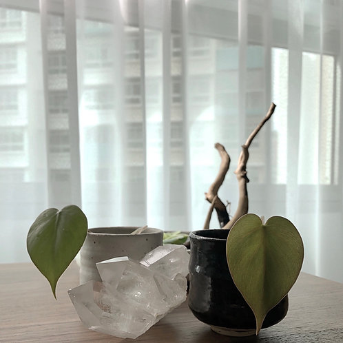 Ceramic Series - Heartleaf in black ceramic