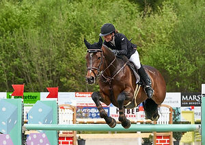 horse-jumping-4416634__480.jpg