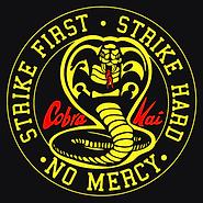 cobra kai 1.png