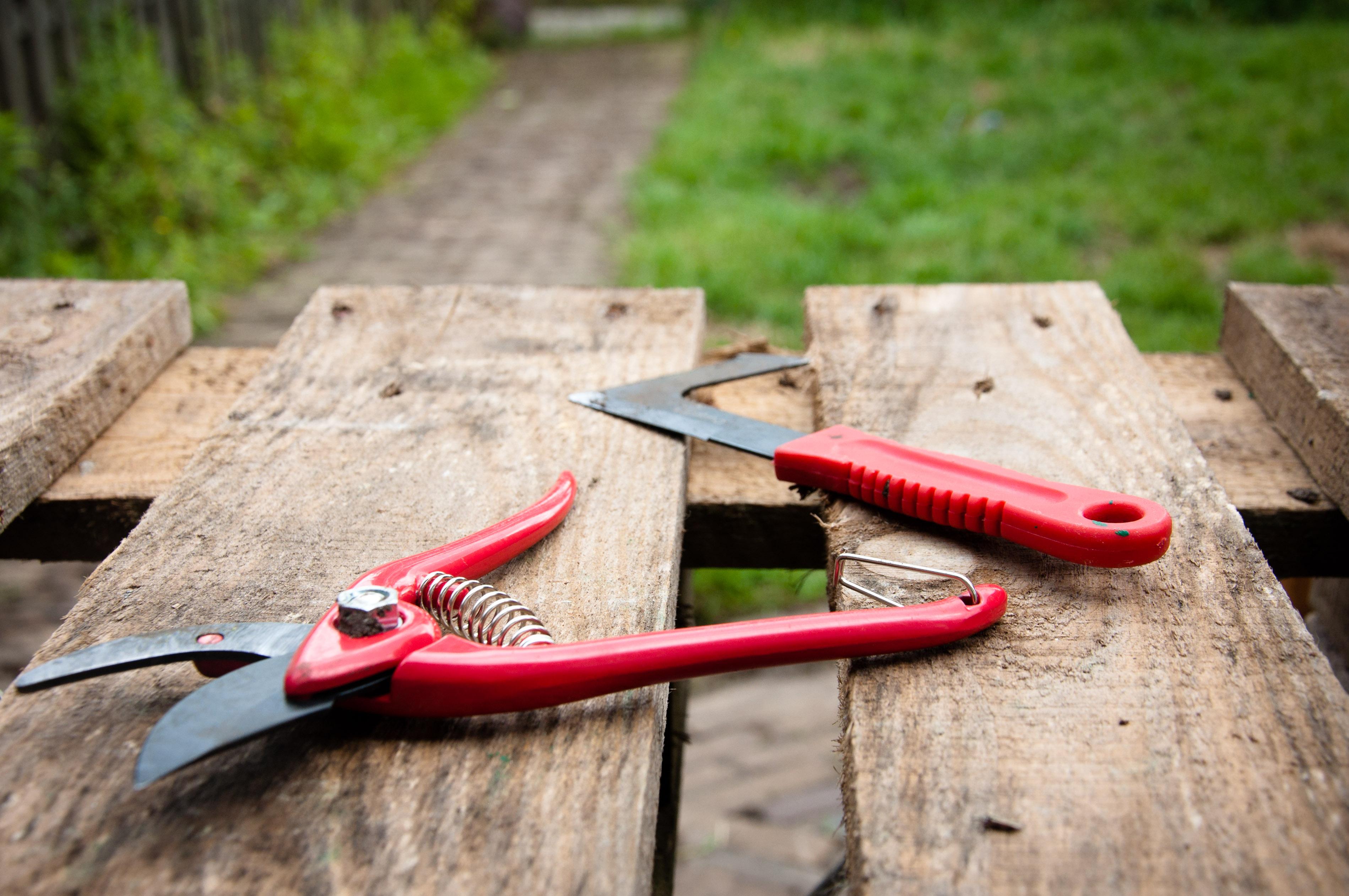 stockvault-gardening-tools132194