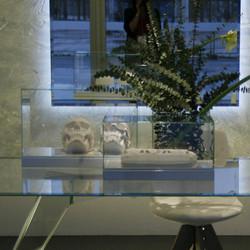 Glas-Italia-Teche-Glass-Display-Cases-xl4