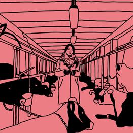 illustration_16.png