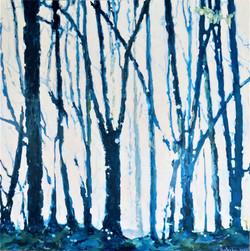 Белый свет сквозь синий лес. 2020 - 2021