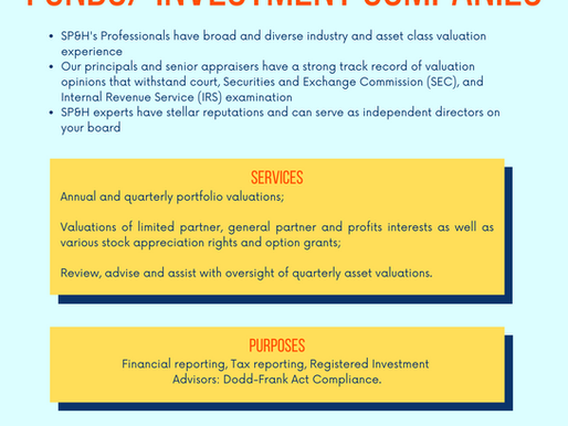 Private Equity Firms / Hedge Funds / Investment Companies / Valuations-Financial Advisory Services