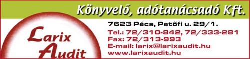 Larix_Audit.jpg