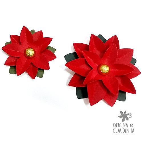 Flor Poinsettia (Flor de Natal) - 5