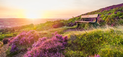 Summer Sunrise on Ilkley Moor