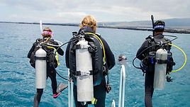 This is a two-part course - the Assistant Instructor (AI) course and the Open Water Scuba Instructor (OWSI) program. Become a better public speaker and get really good at demonstrating skills.