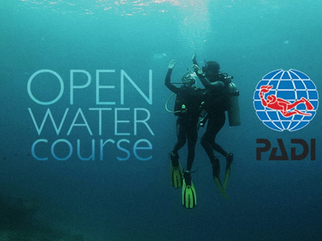 Learn to Scuba Dive in Queensland