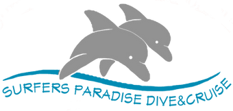 Dolphin Logo New5.png