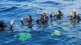 Be a leader who mentors and motivates others. Gain dive knowledge, supervision abilities, and become a role model to divers around the world.