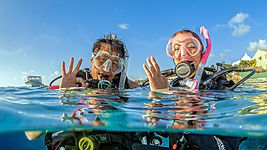 Diver certification begins here. Start with PADI's online eLearning course. Move to the pool and practice your new skills. Then experience four open water (ocean/lake) dives.