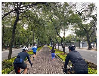 Carril ciclista.jpg