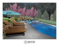 3D Pool Deck Design