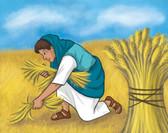 Ruth Gleaning in Fields.jpg