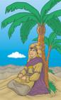 Deborah under Palm Tree.jpg