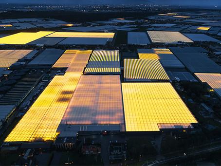 Como os holandeses usam a arquitetura para alimentar o mundo