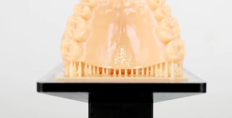 Dental Model Resin Skin Color 500 ml