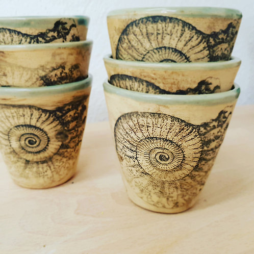 Kaffeebecher Ammonit