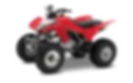 trx250x-atv-rental.png