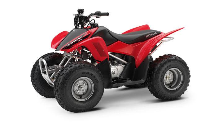 Honda TRX 90cc ATV Rental