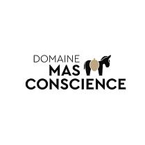 LOGO_MAS_CONSCIENCE.png