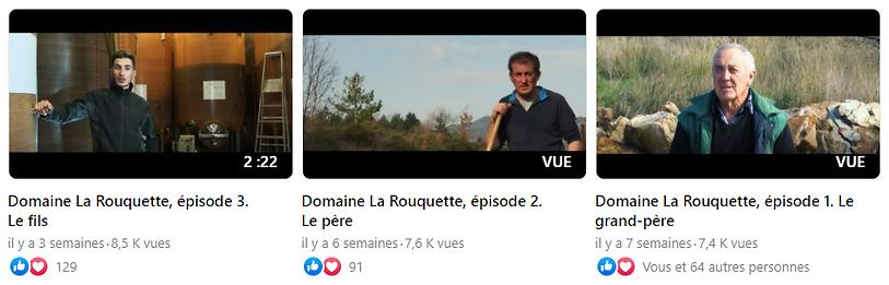 vues_videos_Larouquette.png