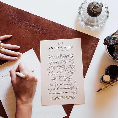 Antiquaria  |  Practice Pad for Calligraphy
