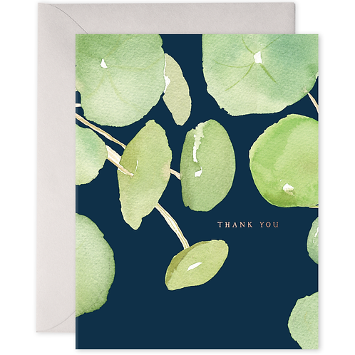Pancake Plant Thank You Boxed Set