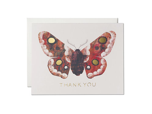 Moth Thank You