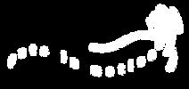 PetsInMotion_Logo_White.png