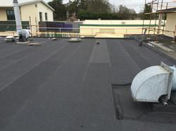 Teagasc Titan Roofing CJ Falconer Architects (17)