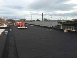 St Mary's NS C&A excavations Walsh Associates Titan roofing