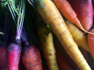Des variétés de carottes surprenantes