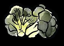 brocolis.png