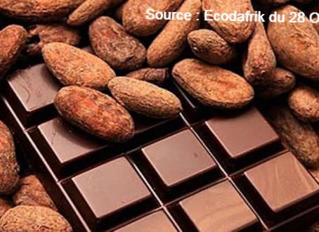 Qu'est-ce qu'un cacao certifié?