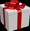 present-150291_960_720.png