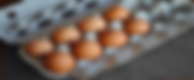 03272012-199099-eggs-in-carton.png