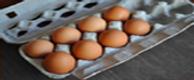 03272012-199099-eggs-in-carton.png