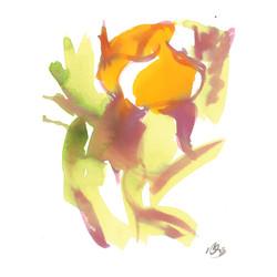 orange flower two