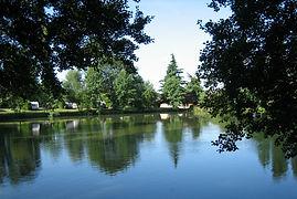 forestview-lakeside.jpg