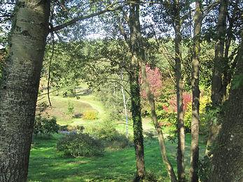 arboretum5.JPG