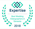 Best Wedding Video Award