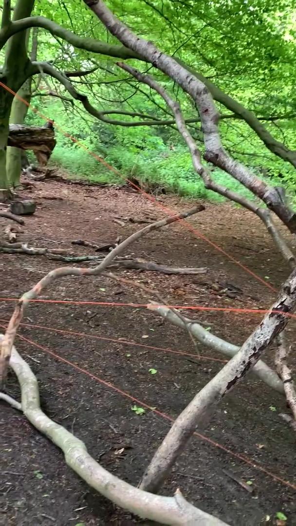 'Tri,Hampstead Heath with Line'.mov