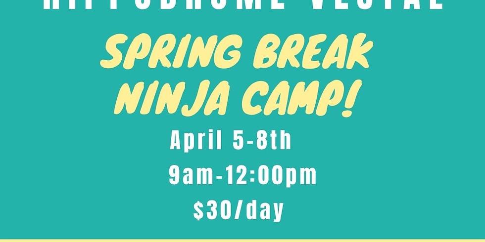 Spring Break Camp (Weds 4/7)