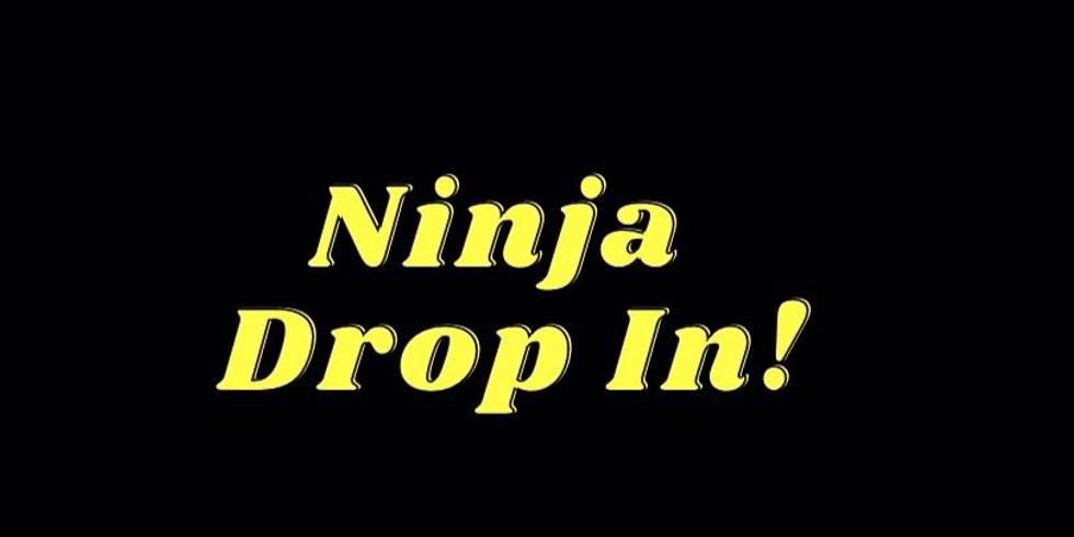 Ninja Drop In     3:-4:30