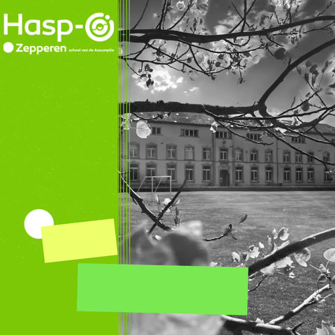 Hasp-O Zepperen - Inschrijven?