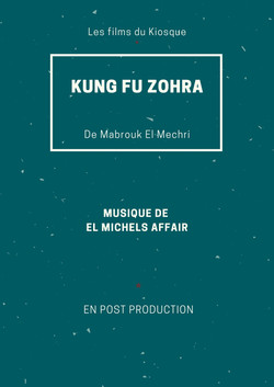 Kung Fu Zohra
