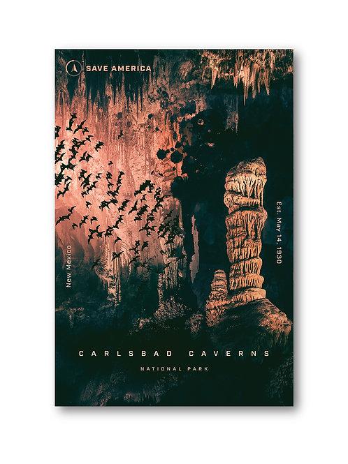 Carlsbad Caverns National Park Print